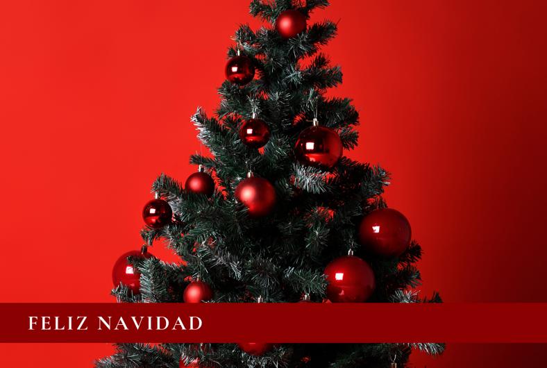 Feliz Navidad y próspero 2020...