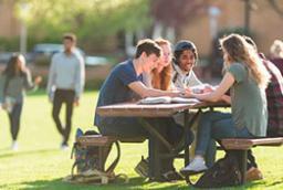 Programas preuniversitarios de verano