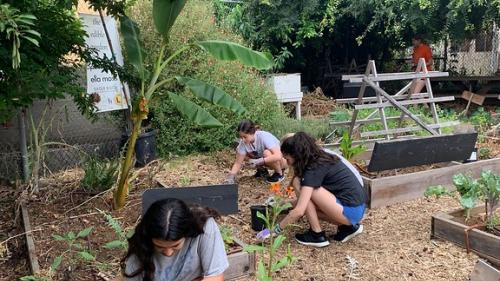 Campamentos de verano en EEUU. En el Ecuador del verano…